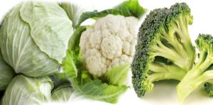 brokoli, kupus i karfiol
