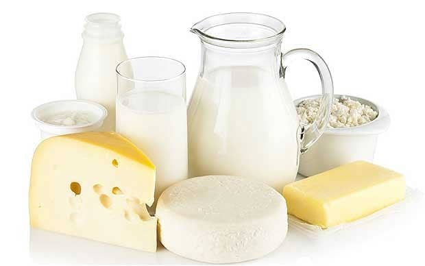 Jogurt mleko i sir